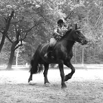 Video Simonetta e J'Adore